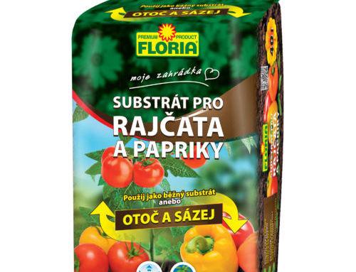 Pestovanie paradajok a paprík na balkóne a terase